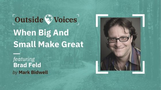 Brad Feld: When Big and Small Make Great - OutsideVoices Podcast with Mark Bidwell
